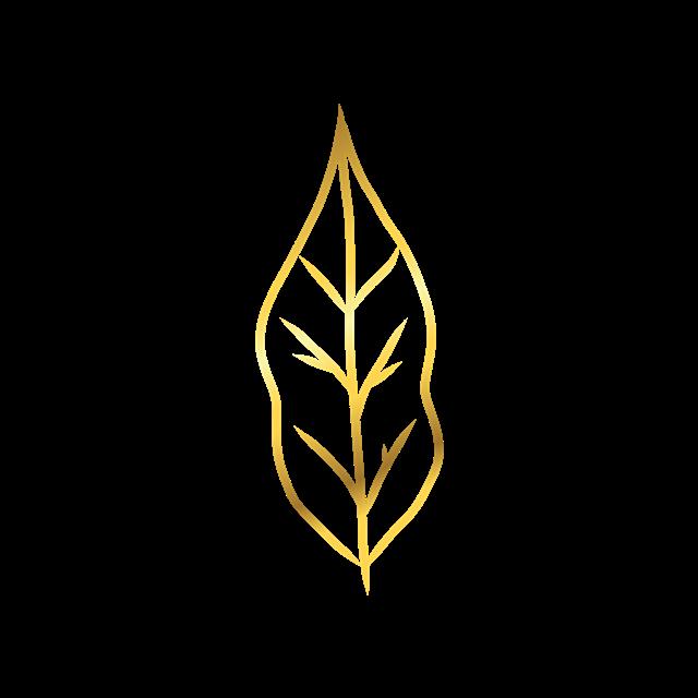 金色纹理叶子图片