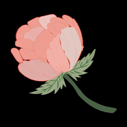 唯美花朵矢量图
