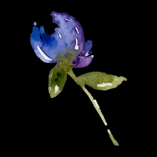 紫色水彩花朵