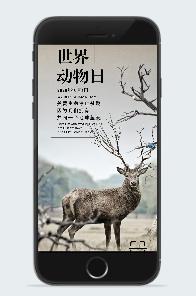 世界动物日宣传图片