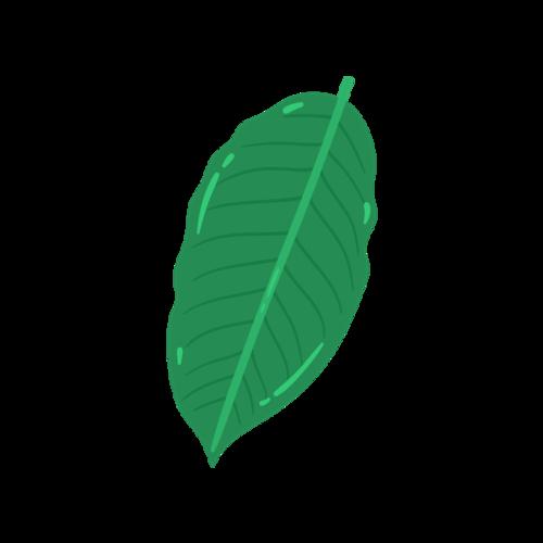 树木灌木矢量图