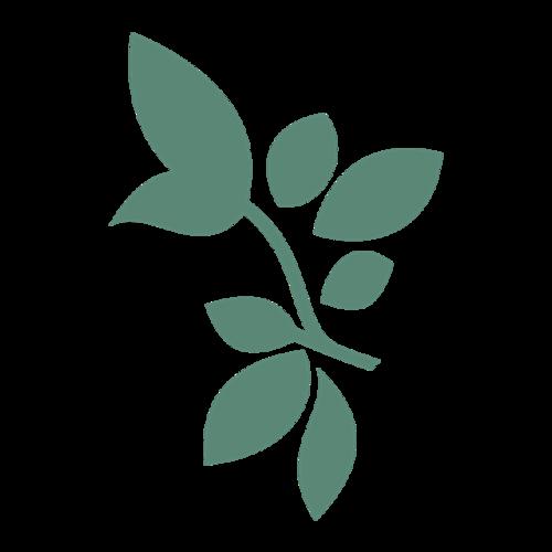 绿色手绘树叶图案