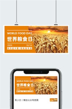 粮食丰收图片