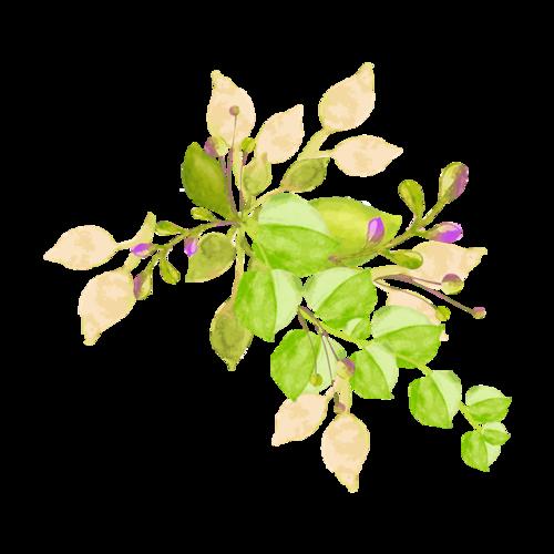 花朵绿叶装饰图案