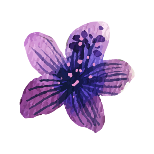 水彩风花蕊花朵矢量图