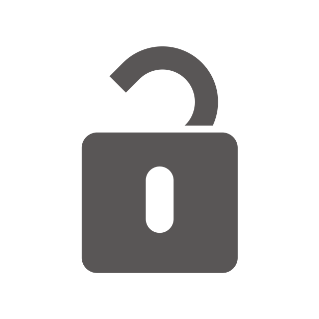 互联网解锁图标