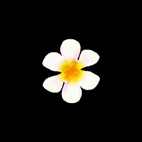 清新粉色花朵素材