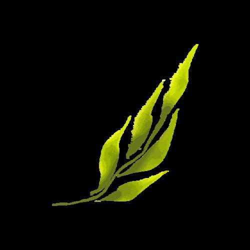 浅绿树叶矢量图