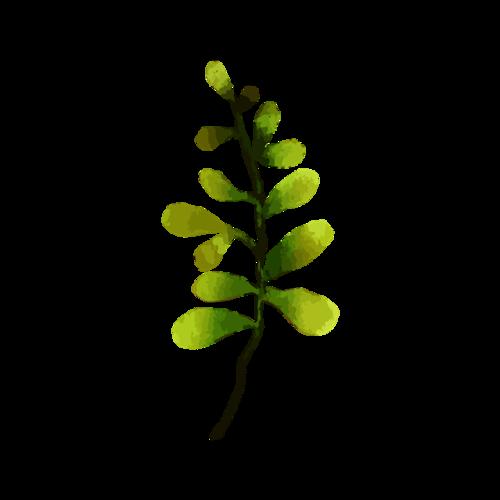 绿色枝叶矢量图
