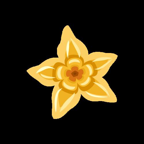 绽放花朵素材
