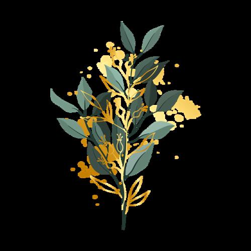 小清新藤蔓树叶免抠图
