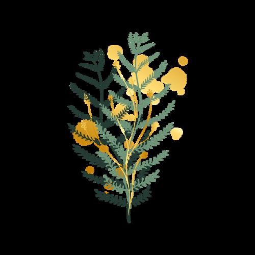 水彩绿色树叶矢量图