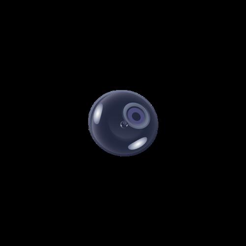 蓝莓彩铅图片
