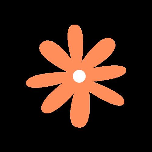 橙色小花简笔画