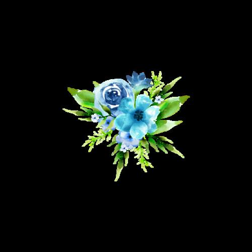 彩绘花簇图片插画