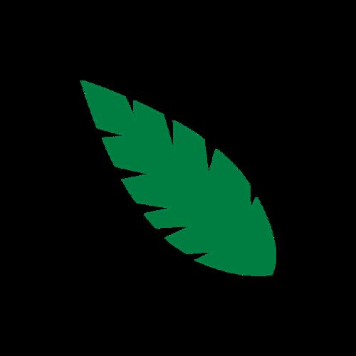 清新绿叶装饰图片