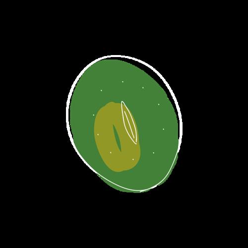 猕猴桃简笔画图片