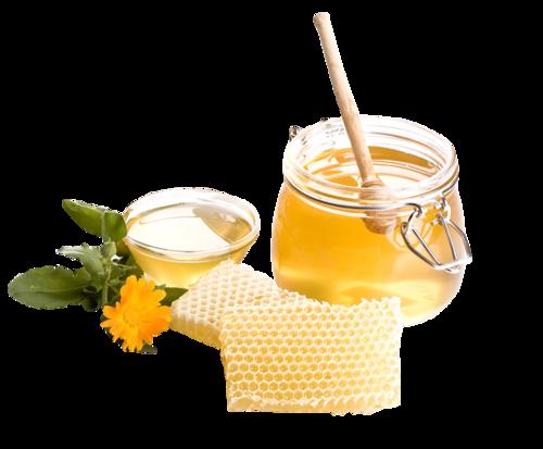 蜂蜜矢量图
