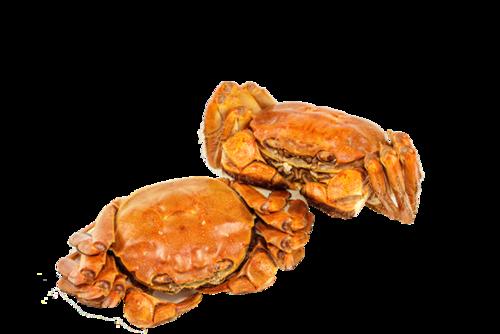海鲜大闸蟹美食摄影图片