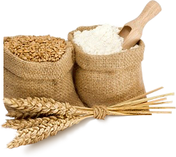 小麦面粉图片