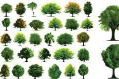 树木矢量素材大全