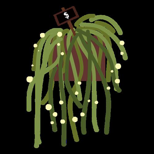 吊兰盆栽矢量图