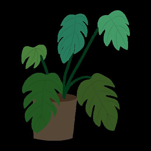 室内绿植盆栽矢量图