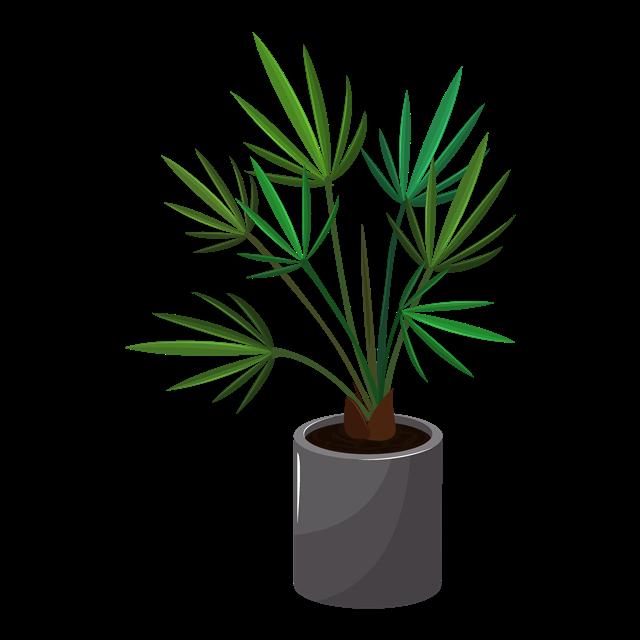 创意植物图片