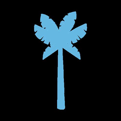 简约椰树图片