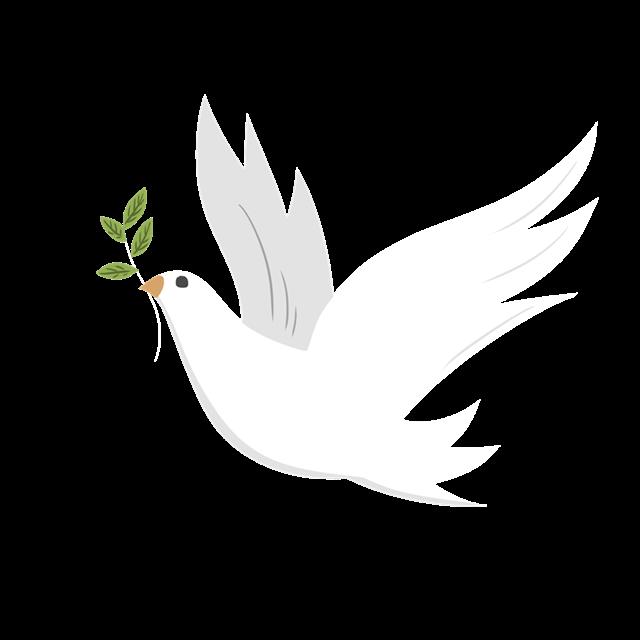 党建飞翔和平鸽