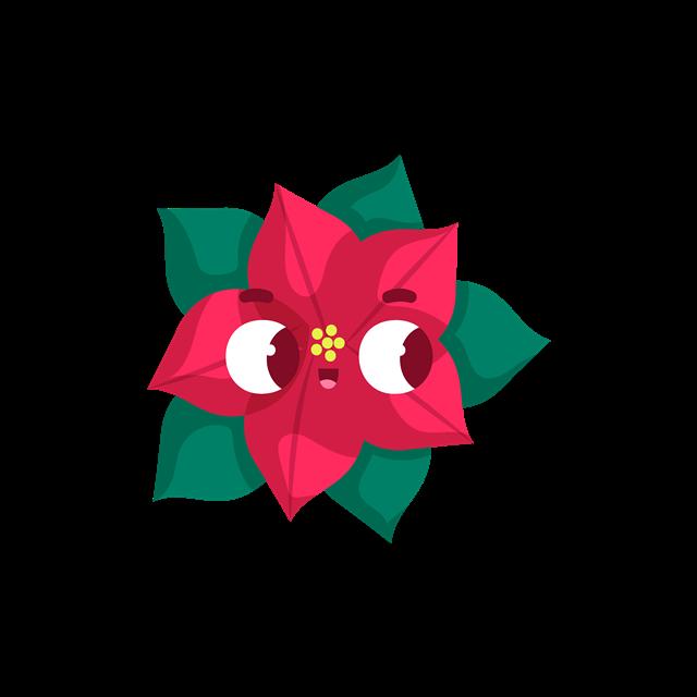 圣诞节花朵