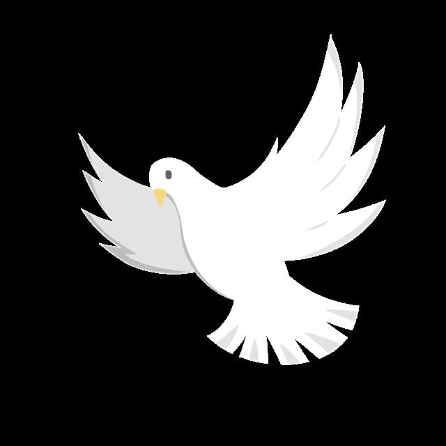 白色和平鸽剪影