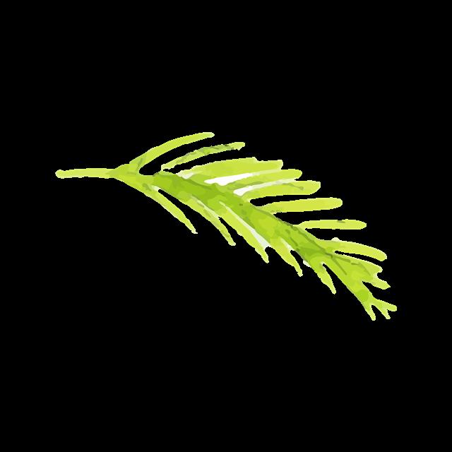 手绘绿色叶子矢量图
