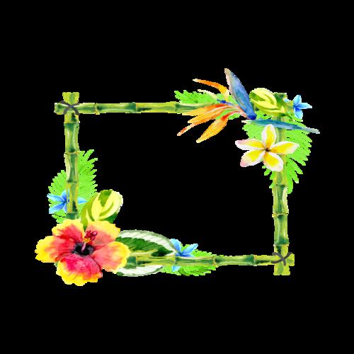 水彩手绘植物边框