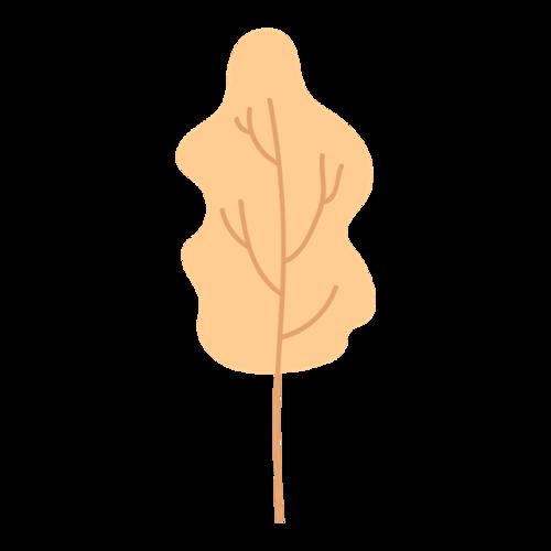 秋天树木插画