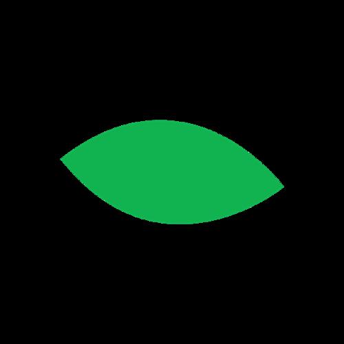 绿叶简笔画