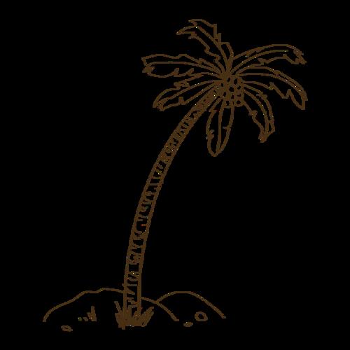椰树简笔画