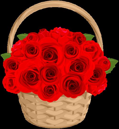 玫瑰花篮图片