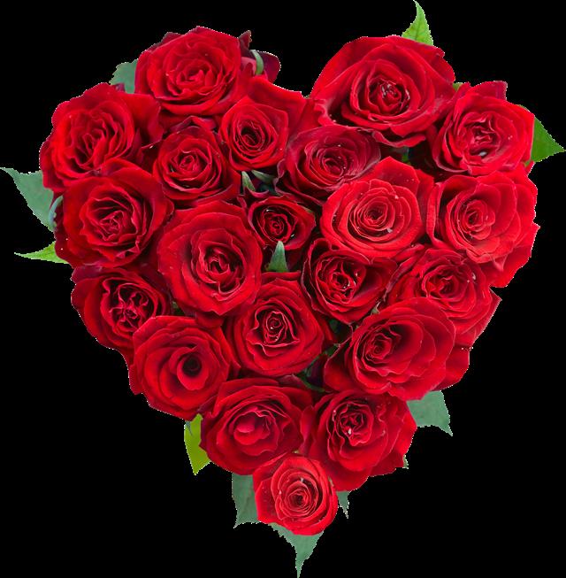 红玫瑰拼成的爱心