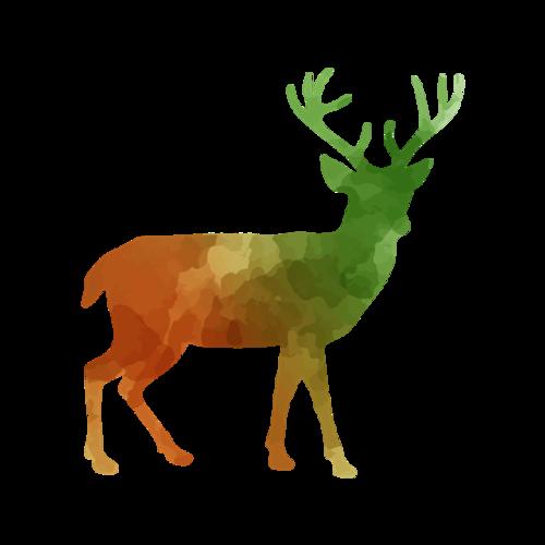 彩绘麋鹿插画