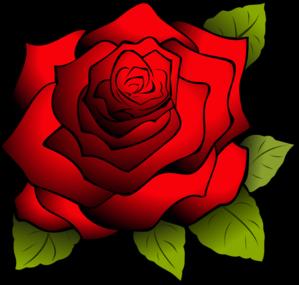 娇艳红玫瑰矢量图