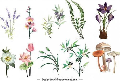 植物花卉卡通图片
