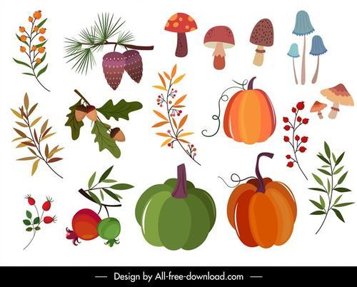 自然植物矢量图