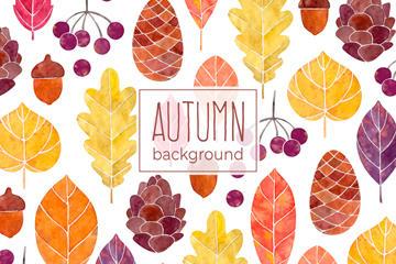秋季主题插画图片