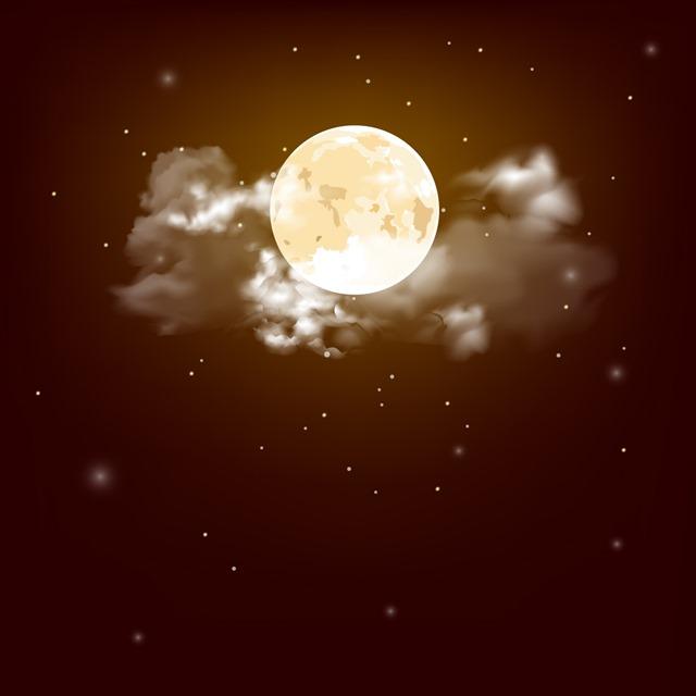 夜晚的月亮插图