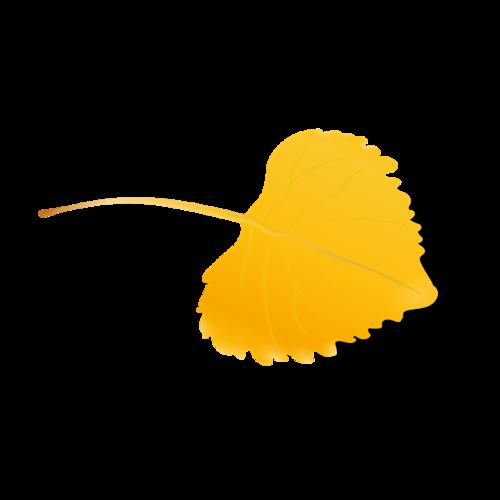 黄色银杏叶矢量图