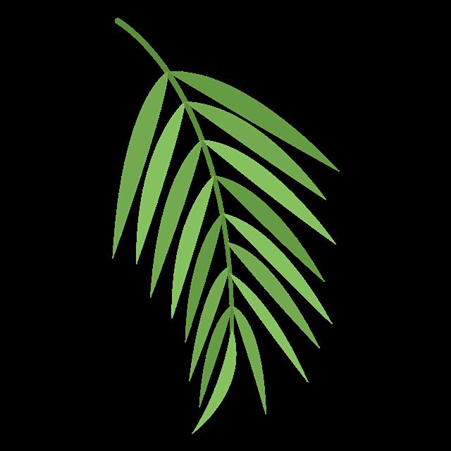 卡通绿色树叶图片