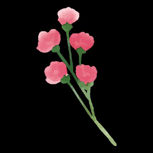 彩绘玫瑰花束