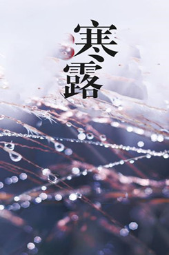 传统节气寒露主题海报