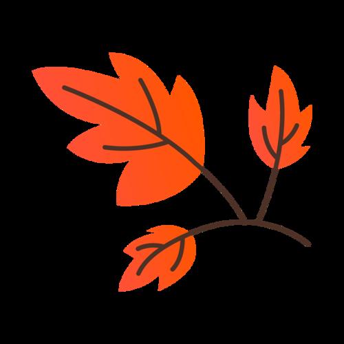 秋季枫叶矢量图片